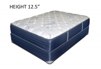 Bemco Charlotte Foam Encased Plush Top Platinum Mattress
