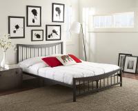 Boyd Sarah Matte Black Metal Platform Bed